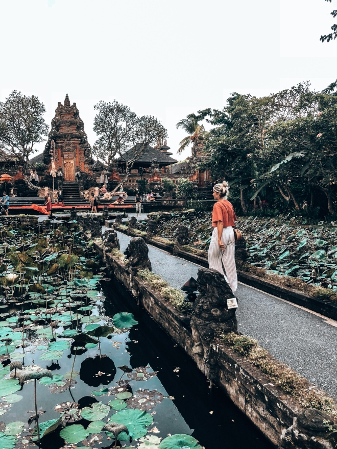 ANDY BEE BLOG | UBUD EXPLORING 3