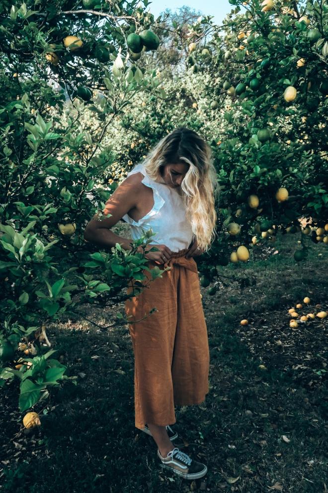 ANDY BEE BLOG | YELLOW 13